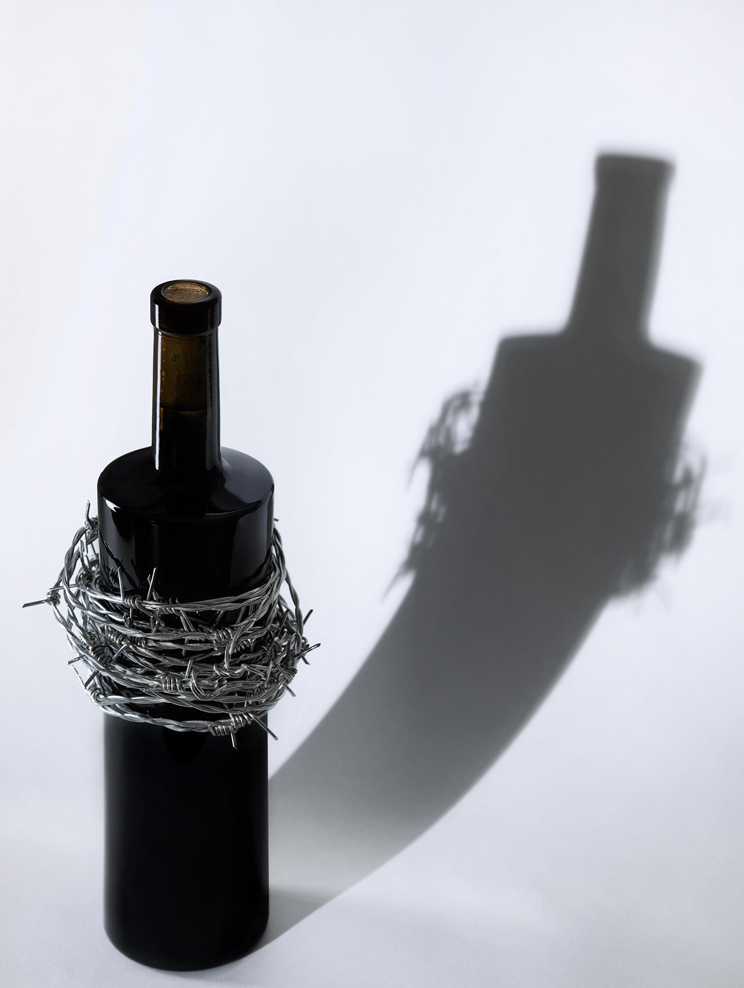 botella vino gil Berzal tinto bodega Rioja Alavesa Laguardia Rioja vitoria
