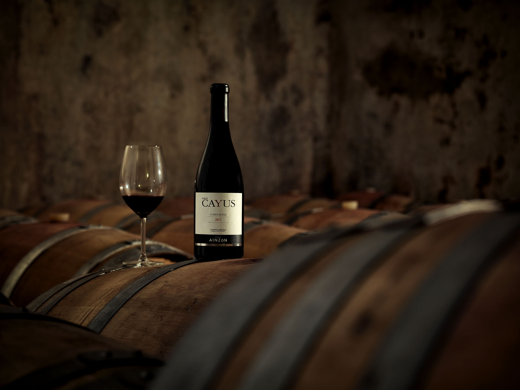 bodega, vino, wine,borja,comarca,zaragoza,rioja alavesa, tinto, blanco,paisaje,wenery,nikon,phaseone,profoto,botella,botle,
